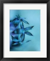 Framed Falling Forward II