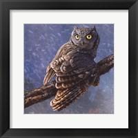 Framed Owl in Winter I