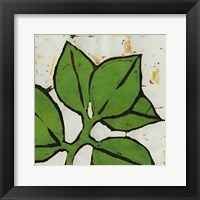 Framed Planta Green III