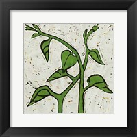 Framed Planta Green V