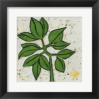 Framed Planta Green IX