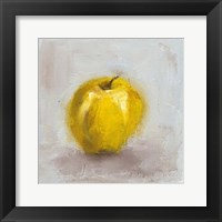 Framed Painted Fruit VI
