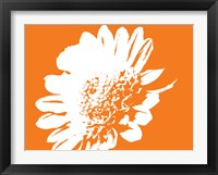 Framed Orange Mum