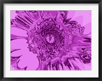 Framed Pink Abstract Flower
