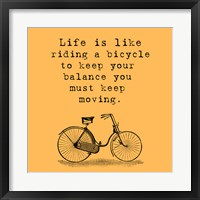 Framed Orange Einstein Bicycle Quote