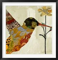 Hummingbird Brocade III Framed Print