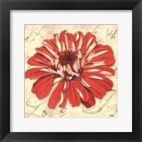 Framed Floral Dream I