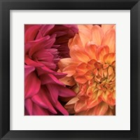 Framed Imagine Flowers