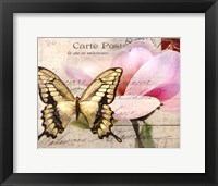 Framed Carte Postale Magnolia I
