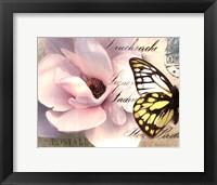 Framed Carte Postale Magnolia II