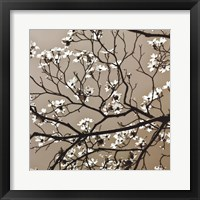 Framed Dogwood Square I