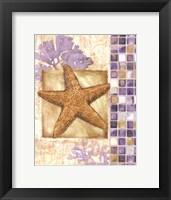 Mosaic Shell Collage II - mini Framed Print