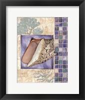 Mosaic Shell Collage III - mini Framed Print