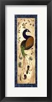 Framed Peacock III - mini