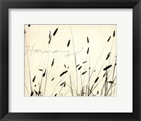 Framed Grass Harmony