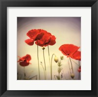 Bloom II Framed Print