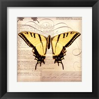 Butterflies Script V - mini Framed Print