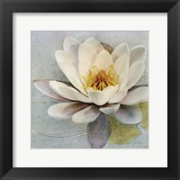 Magnolia Sq. Framed Print