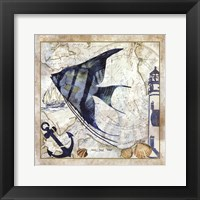 Framed Nautical Fish II