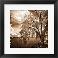 Framed Hopewell Shores Sepia Sq II