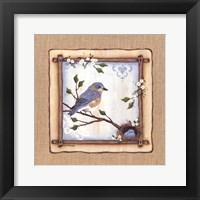 Framed Bluebird Nest