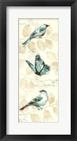 Framed Wing Prints I