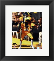 Framed Herky the Hawk, the University of Iowa Hawkeyes Mascot