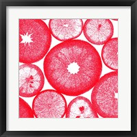 Framed Red Lemon Slices