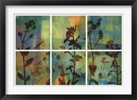 Framed Wild Flowers II