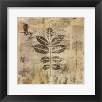 Framed Botanical Sketchbook II
