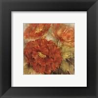 Framed Calypso Reds II