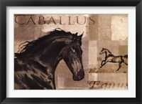 Framed Caballus I