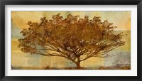 Framed Autumn Radiance Sepia