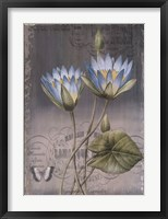 Framed Black Botanical I