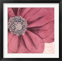 Framed Grandiflora IX
