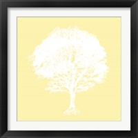 Framed Dream Tree I