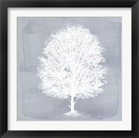 Framed Dream Tree II