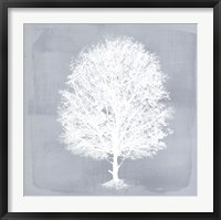Framed Dream Tree II
