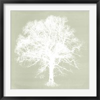 Framed Dream Tree III