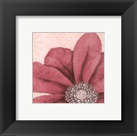 Framed Grandiflora VI