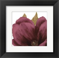 Framed Grandiflora Blush II