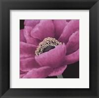 Framed Brilliant Blooms I