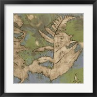 Fern Lake I Framed Print