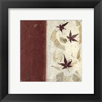 Framed Earthen Textures XII