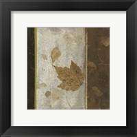 Framed Earthen Textures XVI