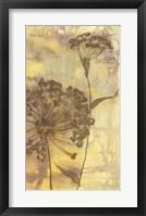 Framed Dandelion Dance II