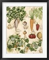 Edible Botanical I Framed Print
