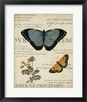 Specimen of Natural Beauty I Framed Print