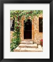 Framed Sunlit Vines