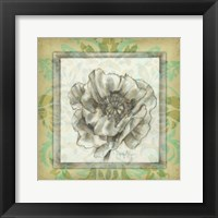 Framed Victorian Poppy I
